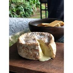 Queso Camembert La Oveja Vasca
